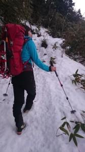 雪を見て喜んで歩いてます