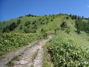 猛暑の稜線。アツイアツイ!こんな中、20人ぐらいの登山者がいました