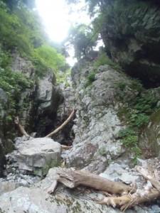 途中まで登ってしまい、ひいひい言ってクライムダウンした滝。右岸手前に巻き道があった