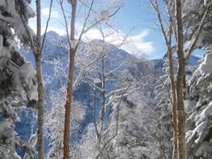 西方尾根が見えてきたが、雪が深くてなかなか近づいてこない