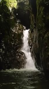 ここは水流激しく登れなかった