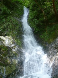 この滝は逆層で、水流も激しかったので巻いた