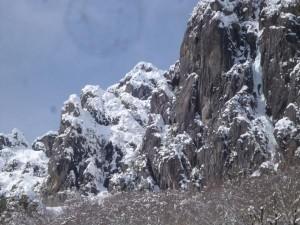 中央奥が中央稜。雪がすごいです。1ルンゼの氷は、いつもより幅広のような、、、