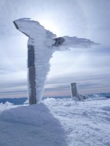 頂上に墜ちた天使