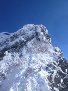 6P目の快適な雪稜を終え、最終ピッチのクラック下でビレーする岩佐さん