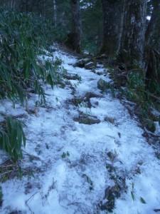 本当の核心は樹林帯の下り。凍り付いて、ツルツルだ