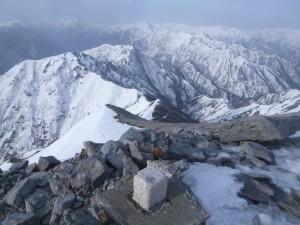蓮華岳頂上から、南に続く北アの稜線。もう夏道がかなり出ている