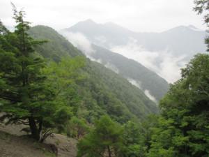 黒薙からの池口岳と鶏冠山