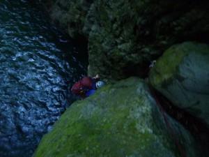 全身から水をしたたらせて、岩にはい上がる