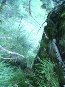 大滝の巻く途中で振り返る。岩の溝を登った