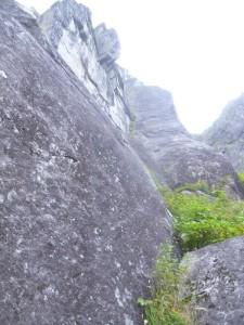 硬そうな上部岩壁。次来た時は登るぞ