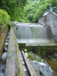 突然、堰堤が出てきてギョッと思ったが、魚道を登れた