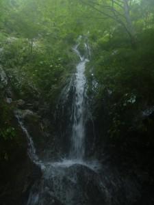 水流の多いこちらが本流だと思い込み、60m登ったが岩壁に突き当たった滝
