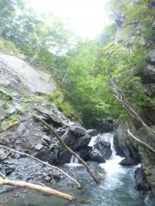 遠山川と易老沢の合流点から入渓