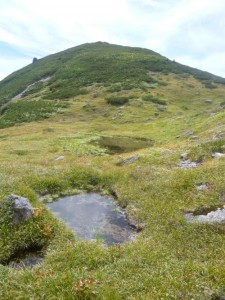 緑の笠の台地にあった小さな池