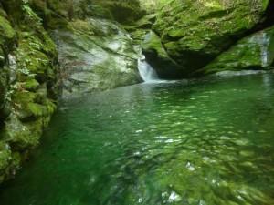泳いで水流を直上しようとしたが、水流が激しく登れず。左の壁から